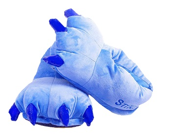 Blue Slipper.jpg