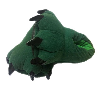 green slipper.jpg