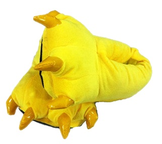yellow slipper.jpg